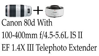 Canon 80d With EF 100-400mm F/4.5-5.6 IS USM 'L' 'ii' Lens With 1.4 Extender Iii