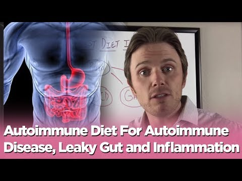 Video Autoimmune Diet For Autoimmune Disease, Leaky Gut and Inflammation