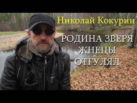 Николай Кокурин - Родина Зверя/Жнецы/Отгулял
