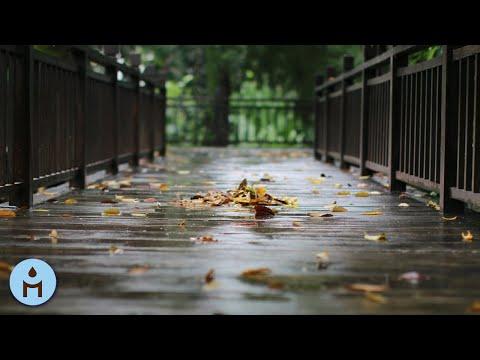 Всё духовное — Nature Sounds: Rain Sounds One Hour White