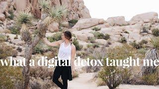 My Digital Detox in Joshua Tree Travel Vlog | Unplugging from Social Media & Self-Care