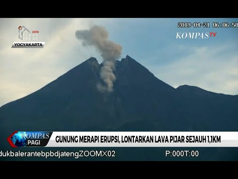 Kembali Erupsi, Gunung Merapi Lontarkan Lava Pijar Sejauh 1,1 Km