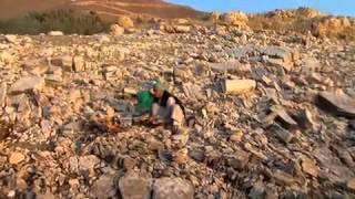 تحميل و مشاهدة كليب على خطى الحبيب - للمنشد محمود اللغبي MP3