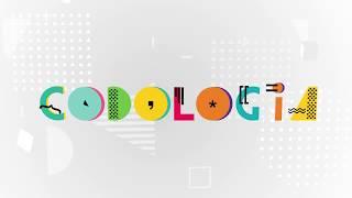 Сеть Детских IT-школ Codologia