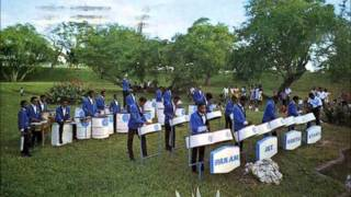"""Moon River"" Pan Am North Stars Steel Orchestra(1962)"