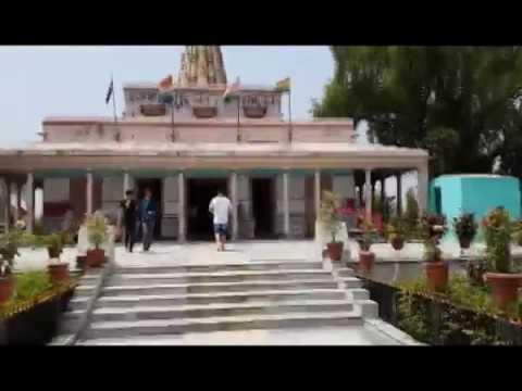 Область в городе лесном храме