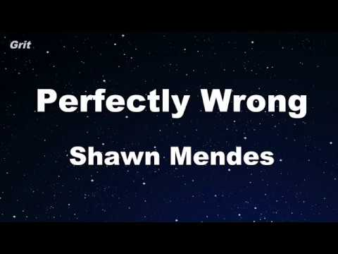 Perfectly Wrong - Shawn Mendes Karaoke 【No Guide Melody】 Instrumental
