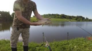Рыбалка новоселки наро фоминский район форум