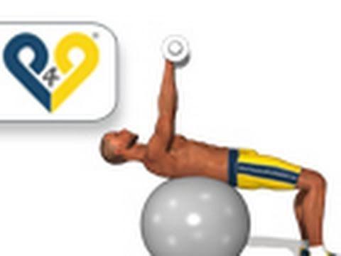 Lensemble des exercices pour le tonus des muscles et le tonus