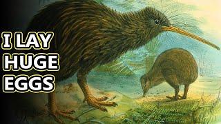 Kiwi Facts: New Zealands Flightless Birds | Animal Fact Files