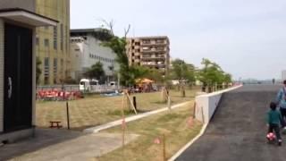 妙典スーパー堤防自由広場(江戸川河川敷)のイメージ