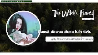 [KARA/THAISUB] Baek Yerin - Merry And The Witch's Flower (야간비행 )