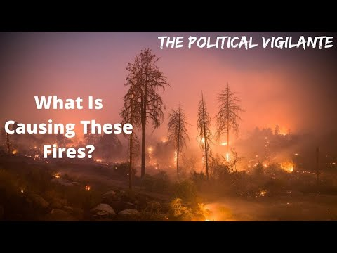 Many Factors Including Climate Change Causing Forest Fires