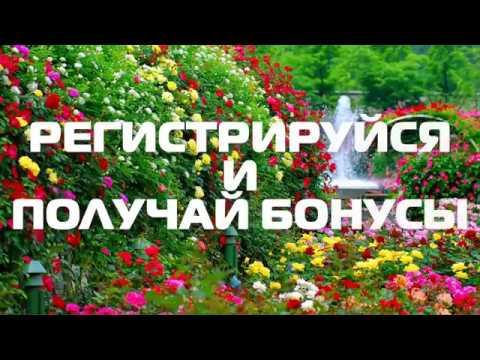 #YouAreNotAlone PARK AVENUE Социальная Сеть #ВыНеОдиноки