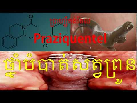 Paraziti u ljudskim crijevima