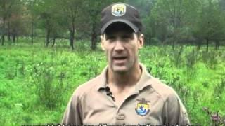 Bog Turtle Habitat Restoration