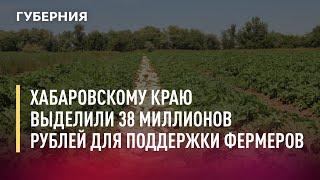 Хабаровскому краю выделили 38 миллионов рублей для поддержки начинающих фермеров. 16/07/21