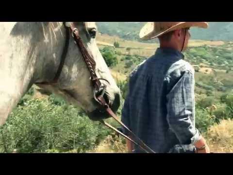 Lattivatore di cavallo per donne dove comprare in Samara
