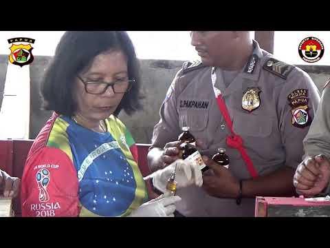 Binmas Noken Polri Gandeng Dinas Peternakan Kabupaten Mimika, Berikan Vaksin Pada Ternak Babi