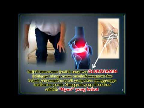 Video Penyakit Tulang & Sendi.mp4