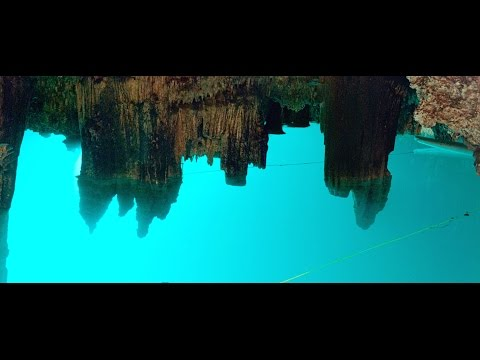 Private All Inclusive Tour in Playa del Carmen – Cenotes of the Riviera Maya
