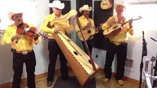Jilgueros Michoacanos  - Tu Delirio