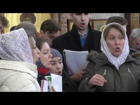 Разнорабочий в белой церкви