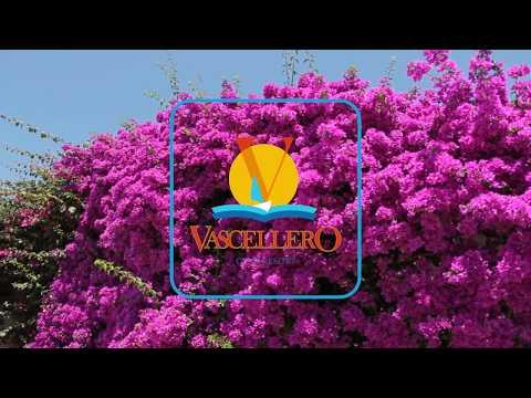 Vascellero, un mondo di servizi per tutta la famiglia
