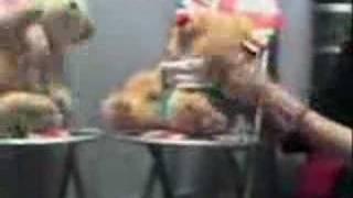 Anything A Bear Can Do-John Barrowman
