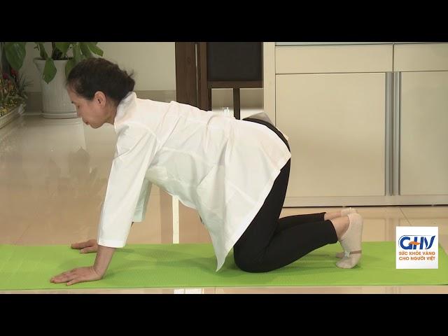 Bài tập tại nhà cho người bị bệnh khớp - Bài 4: Cột sống thắt lưng
