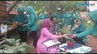 Taman Herbal Bejo Kalisegoro Menjadi Sarana Eduwisata Anak PAUD