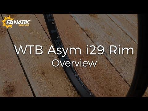 WTB Asym I29 Rim Review at Fanatikbike.com