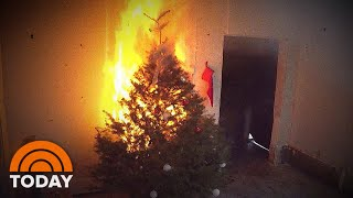 Rossen Reports: How To Prevent A Christmas Tree Fire   TODAY