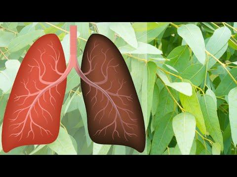 Tratamentul artrozei în astmul bronșic