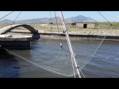 Schizzi su pesca per bambini