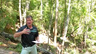 Lake Keowee Real Estate Video Update September 2019 Mike Matt Roach