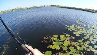 Рыбалка в сызрани на волгегоьубая гавань
