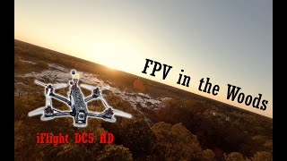 FPV in the Woods - Cinematic FPV flying during sunset