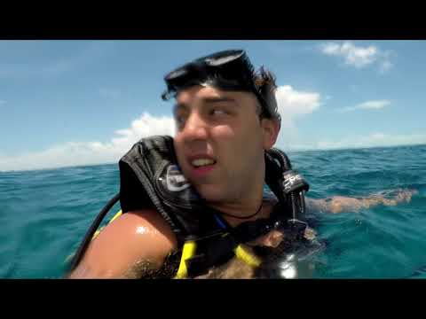 Scuba Diving In Cancun, Mexico Baby! |Vlog|
