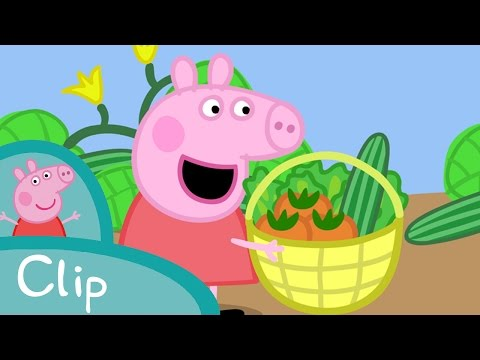 Peppa Pig_Ramasser des légumes