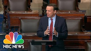 Sen. Murphy Asks To Pass Universal Background Checks After The Santa Clarita Shooting | NBC News