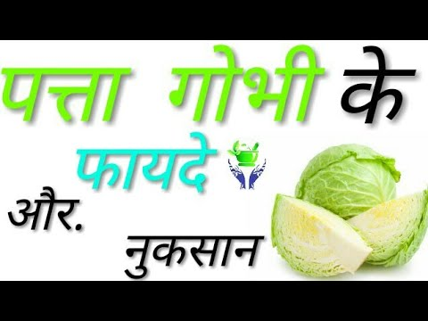 , title : 'पत्ता गोभी के फायदे और नुकसान - Cabbage Benefits and Side Effects in Hindi