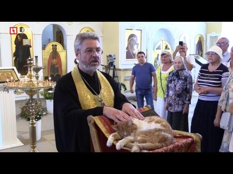 Молебен по домашним животным