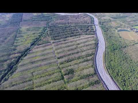 107中樞植樹場地為串聯海岸山脈與中央山脈,建置長2 .5公里、300~500公尺寛生態廊道的示範場地(西段-中央山脈)