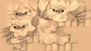 Н.Римский-Корсаков - Полёт шмеля - Сказка о царе Салтане