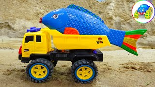 Dump truck, crane truck, plane bring carp to the lake - Toys for kids - Kid Studio