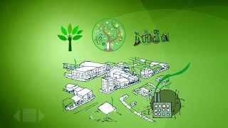 Aprendamos sobre negocios verdes y sostenibles