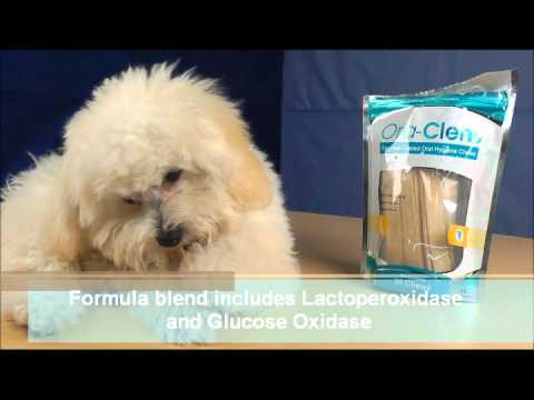 6-PACK Ora-Clens Oral Hygiene Chews Large (180 Chews) Video