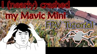I (nearly) Crashed My DJI Mavic Mini   DJI Mavic Mini FPV Mode
