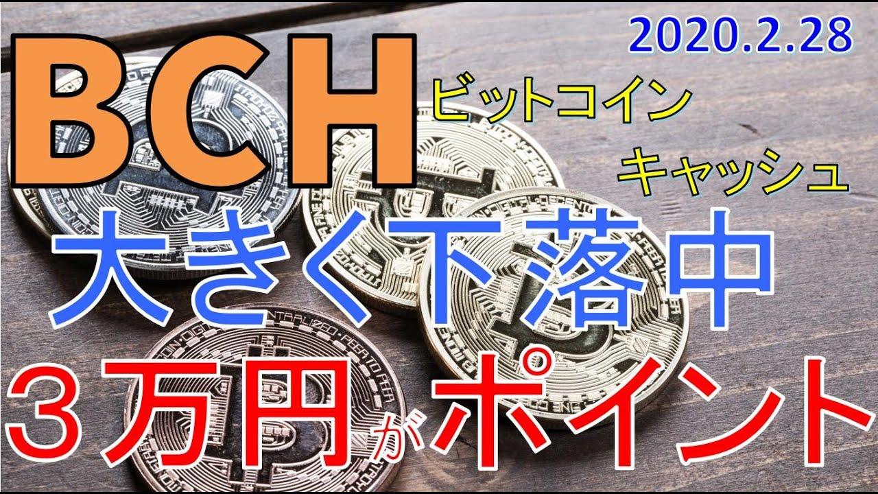 【仮想通貨ビットコインキャッシュ(BCH)】大きく下落中。3~3.2万円がポイント。今後のシナリオをチャート分析2.28 #ビットコインキャッシュ #BCH #仮想通貨